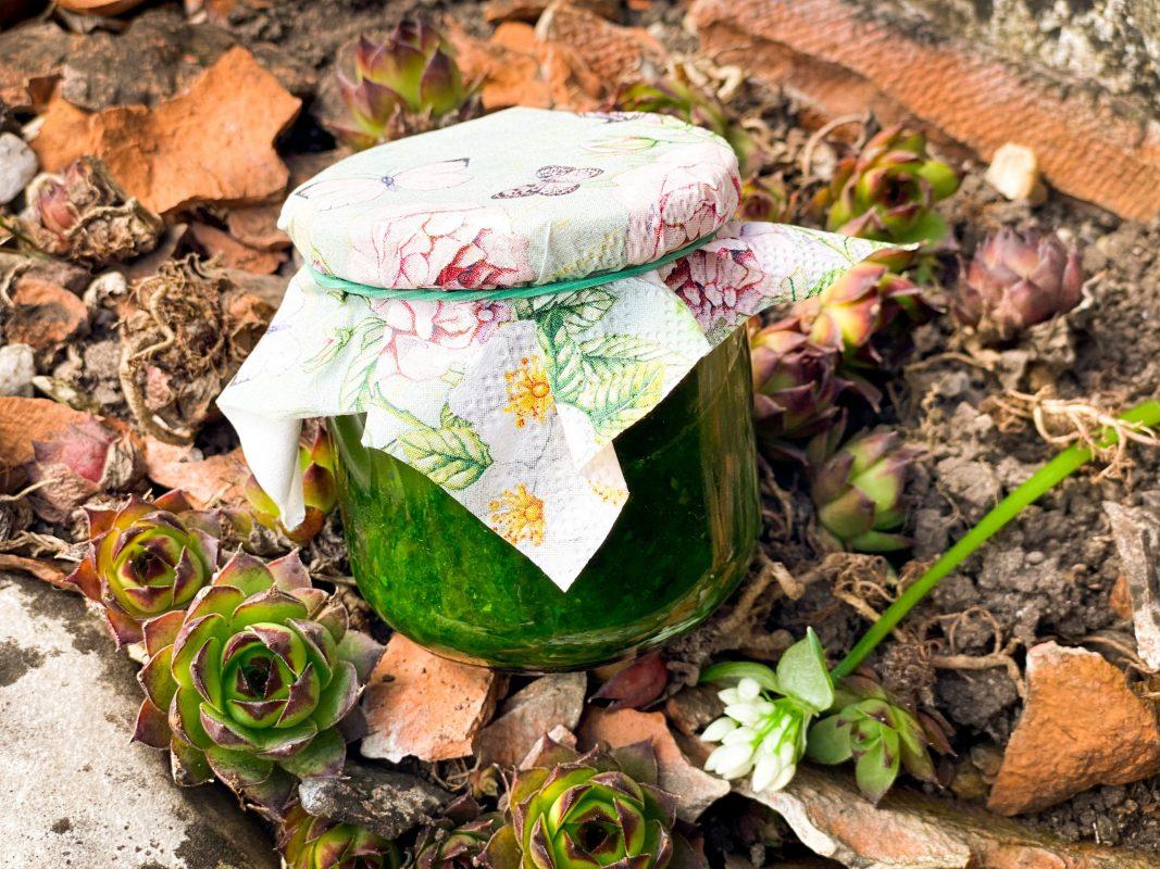Bärlauchpaste - Kathis Rezepte